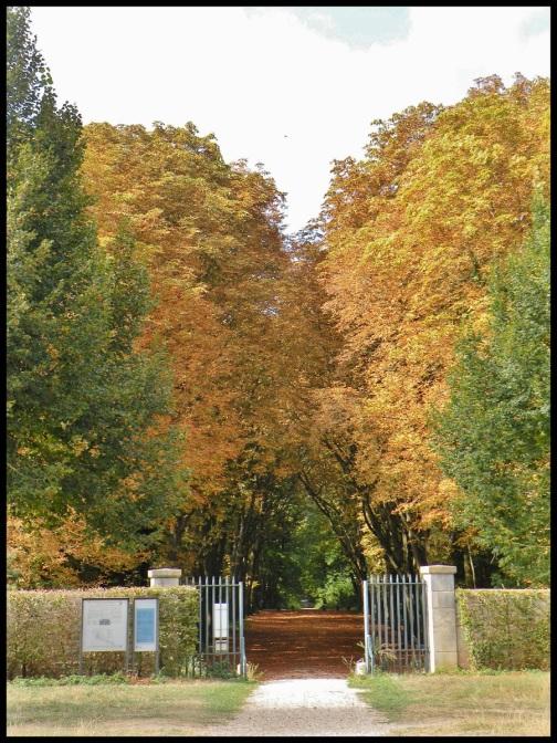 les grilles pour acceder ou sortir du parc du château de Saint Germain en Laye