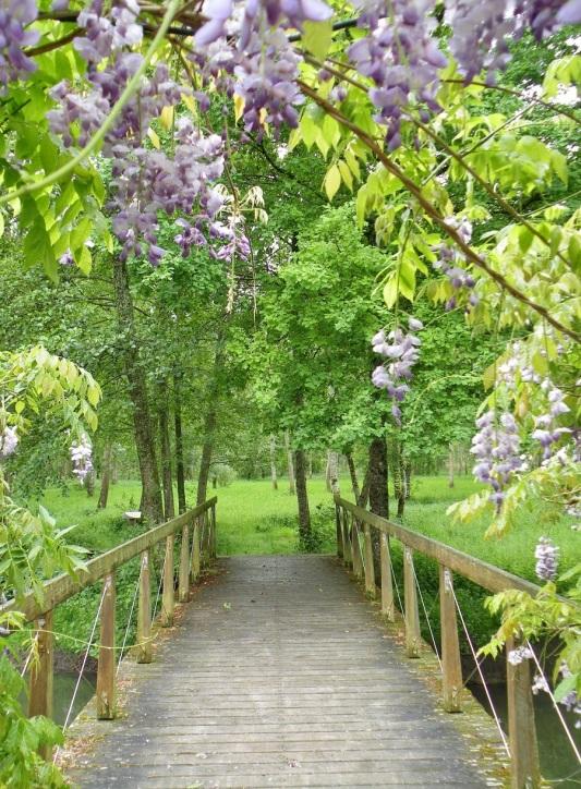 le sentier botanique de Ferrieres